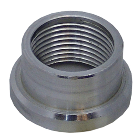 Weld Bungs Female NPT